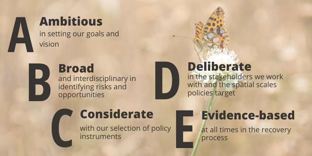 Image of butterfly with overlaid text: (A) Ambitious in setting our goals and vision, (B) Broad and interdisciplinary in identifying opportunities and risks, (C) Considerate with our selection of policy instruments, (D) Deliberate in the stakeholders we work with and the spatial scales policies target, (E) Evidence-based at all times in the recovery process